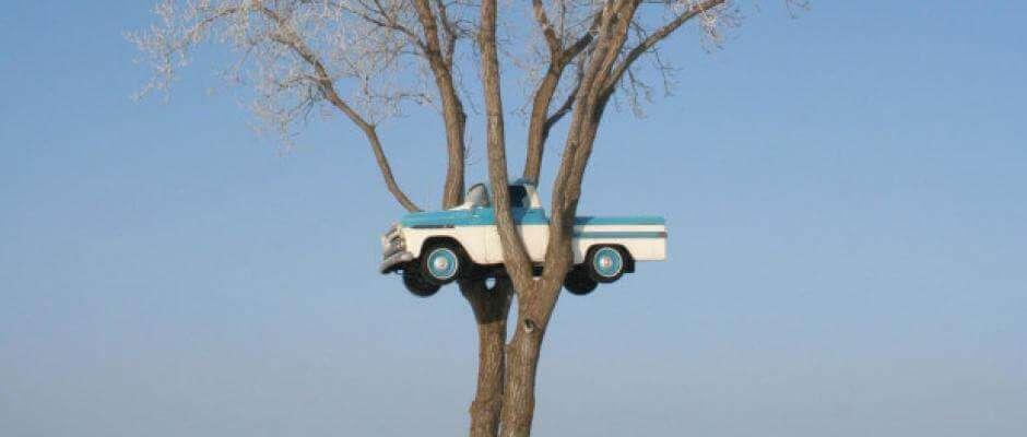 car-in-tree-GPS-GNSS-spoofed
